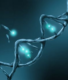 Beyond BRCA: Multi-Gene Testing for Breast and Ovarian Cancer Risk