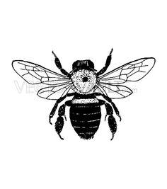buy vector graphic vectors honeybee