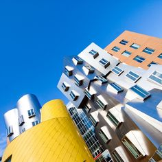 Frank Gehry  | Flickr - Photo Sharing!