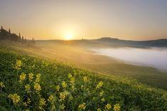Desktop Wallpapers Fog Nature Hill Grasslands Sunrises and sunsets