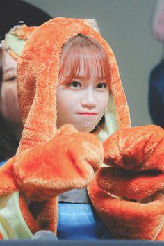 """© little summer"""" Kpop Girl Groups, Kpop Girls, Secret Song, Girl Artist, Fandom, Woollim Entertainment, Japanese Girl Group, Beautiful Fairies, Famous Girls"""