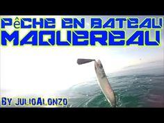 Pêche du Maquereau en bateau dans la mer Méditérranée . Au large de Valras