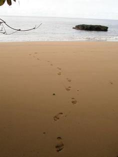 Macaco beach 09/2007
