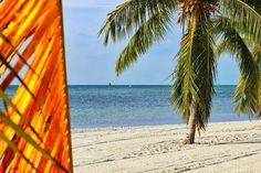 Florida Keys island life...my dream place to live!