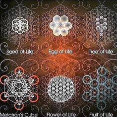 0Sacred geometry is the blueprint of creation and the genesis of all form. It's an ancient science that explores and explains the energy patterns that create and unify all things, revealing the precise way creative energy organizes itself. Within...