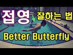 수영강습 / 접영잘하는 방법 / How to Improve Butterfly Stroke - YouTube