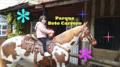 Beto Carrero - segundo dia/férias de julho 2016 (parte 4)
