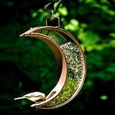 Crescent moon bird feeder from kick starter