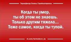 О вечном... #Гомель #Беларусь #Брянск #Могилёв #Минск #Чернигов #Юмор | uDuba.com
