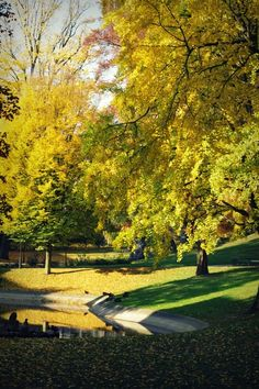 public park in Leuven, the city where I studied and lived for five years