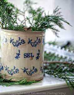 Antique French Salt Crock with winter greenery
