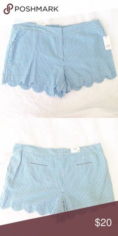 "Crown & Ivy Scalloped Blue Seersucker Shorts Love love love these precious blue seersucker scalloped shorts for summer! The shorts secure with a hook and eye closure. There is a slit for a button if you wish to add one. A button comes attached to the tag of these shorts. Brand new with tags! Here are the measurements!  Waist= 40"" Front rise= 10.5"" Back rise= 18"" Inseam= 4"" Length= 14"" Leg opening= 15"" Crown & Ivy Shorts"
