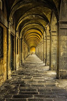 taramysweet:  mostlyitaly:  Arches in Lucca(Tuscany) by Jeremie Doucette on Flickr.     ❤️❤️