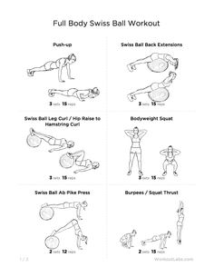 Full Body Swiss Ball Workout for Men & Women no 1