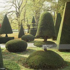 Stock Photo : Topiary garden