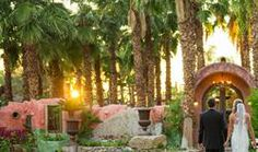 Boojum Tree's Hidden Gardens in Phoenix - Foskett Creative Photography