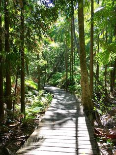Meditation, Yoga and Mindfulness Retreat @ Awaken Meditation Retreats - 18-February https://www.evensi.com/meditation-yoga-mindfulness-retreat-awaken-retreats/237187395
