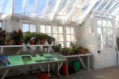 Greenhouse in Inveresk Lodge Garden, Musselburgh, Scotland.