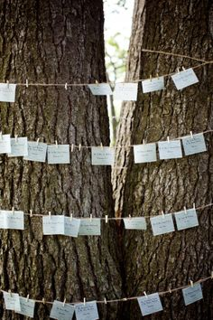 Rustic Wedding Place Card idea, or an idea to hang photos. (You could hang them on the tree trunks in the room)