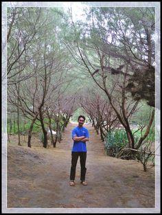 Adres: Jalan Lintas Selatan, Patihan, Gadingsari, Sanden, Bantul, Daerah Istimewa Yogyakarta