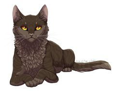 Finally a pic of mousefur a thunderclan warrior she cat that had no mate or kits and was instrumental in the clans welfare and survival