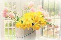 https://flic.kr/p/mtVwRM | spring bouquet
