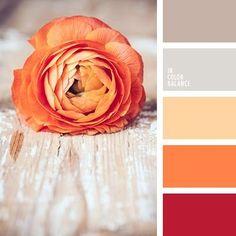 12_dekoráció színei