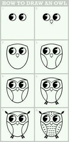Draw owl
