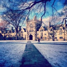 It's safe to say that campus looks beautiful in the winter.