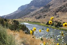 The beautiful Wind River Canyon