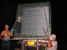 Chain wire temporary fence,Temporary Fencing,Temporary fence rental