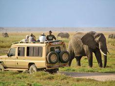 Safari Amboseli
