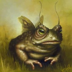Fairy Toad