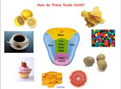 sense of taste activities | do an experiment like a taste test where the students taste ...