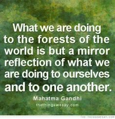 Gandhi quote on forests. www.dogwoodalliance.org