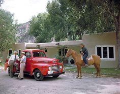 1948 Ford F-1 Pickup Truck [vintage]