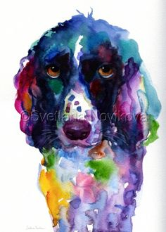 English Spring Spaniel Dog watercolor painting print