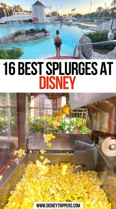 16 Best Splurges At Disney | 16 best things to buy at disney | best disney world splurges | best things to do at disney | what to spend money on at disney | disney world splurges | what to buy at disney | disney travel tips #disney #disneyworld Disney Secrets, Disney World Tips And Tricks, Disney Tips, Disney Disney, Disney Magic, Disney World Florida, Disney World Parks, Disney World Resorts, Disney Vacations