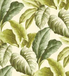 Papel pintado hojas grandes de planta tropical Tamarindo 120039      vale para baño