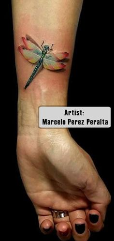 Best Dragonfly Tattoos in the World, Dragonfly Tattoos in the World, Best Dragonfly Tattoos,  Best Dragonfly Tattoos Video, Best Dragonfly Tattoos Photos, Best Dragonfly Tattoos Imagenes, Amazing Best Dragonfly, Best Dragonfly Tattoos Pinterest, Best Dragonfly Tattoos For Men, Best Dragonfly Tattoos Female