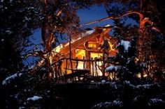 Treehouse rentals in Norway - Book your unique place to stay now