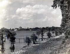 View of the Lake and City photo from the McNeese Archives Louisiana Gumbo, Louisiana History, Lake Charles Louisiana, Historical Images, New Orleans, Pictures, Photos, Vacation, French