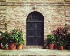 """New Orleans French Quarter Door Photograph """"Courtyard Door"""". A fine art photograph of a door that leads to a courtyard in the New Orleans French Quarter. HOW TO ORDER: Select the quantity and size print you would like from the drop down menu to the right before adding to your cart. The photograph may be cropped slightly different then the preview, depending on which size print that you order. ABOUT YOUR PRINT: The watermark will not appear on final printed image. The photograph resolution..."""