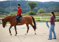 What Are the Most Important Traits a Riding Instructor Should Have?