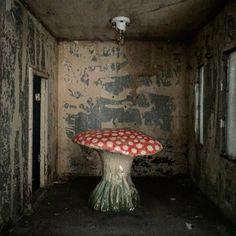 Home Sweet Home: doll house interior with @nathalie_lete for @astierdevillatte ceramic mushroom. #patchnyc #mushroom #nathalielete #astierdevillatte #dollhouse #vintage