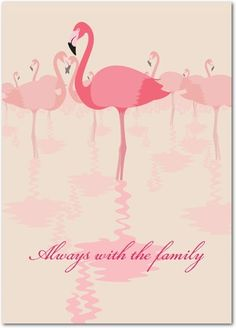 card pink flamingo