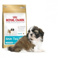 Alimento a medida para cachorros de la razaShih Tzude 2 a 10 meses. #perros #dogs #maskokotas #royalcanin #shihtzu