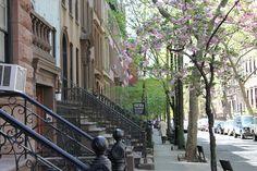 New York Street View, New York, Usa, New York City, Nyc