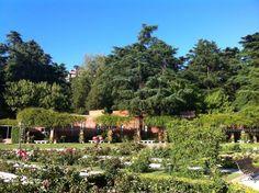 Rosaleda de Madrid (Jardín de Ramón Ortiz) in Madrid, Madrid
