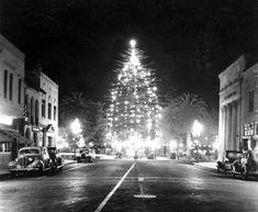 Vintage Photographs, Vintage Photos, Orange County California, California California, Vintage California, Christmas Past, Vintage Christmas, 1950s Christmas, Christmas Things